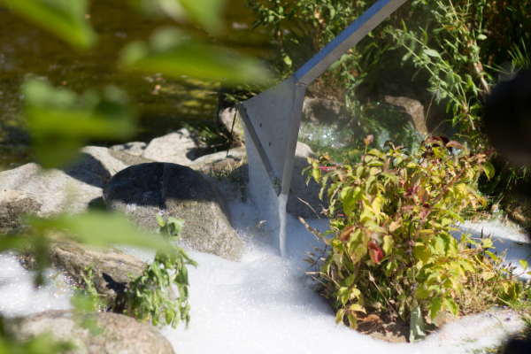Spring-is-the-best-time-to-target-weeds-take-control-now-with-foamstream