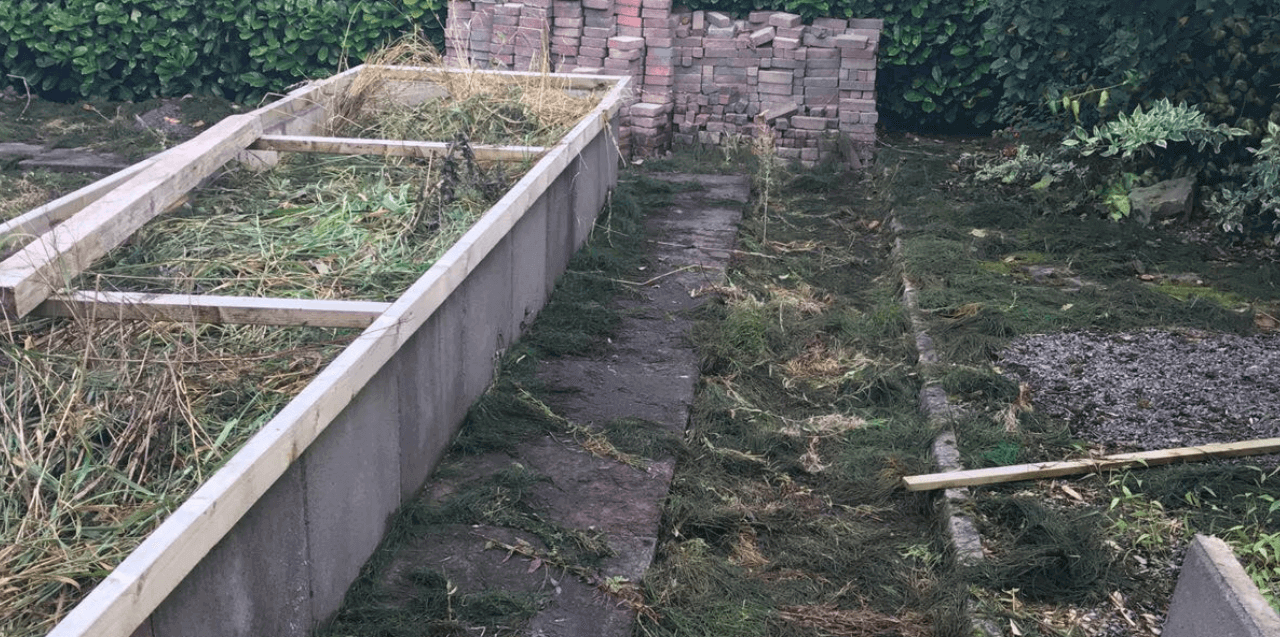 garden after weed and moss control